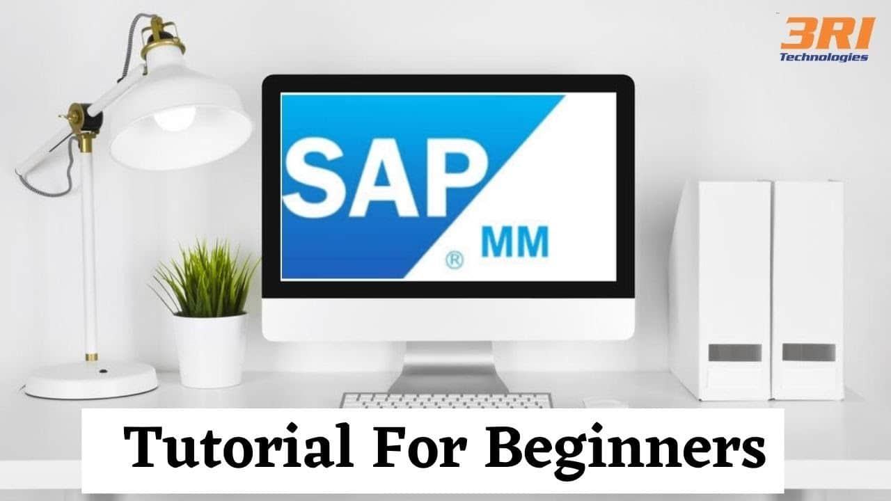 What is SAP MM? Future Scope of SAP MM