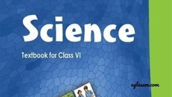 How can I prepare Science notes from NCERT solutions?